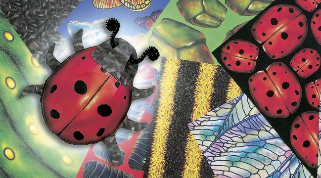 """Roylco 15237 Bug Paper Assorted Patterns - 8.5"""" x 11"""""""