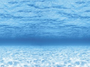"Pacon 56525 Fadeless Paper Rolls Under Sea - 48"" x 50'"
